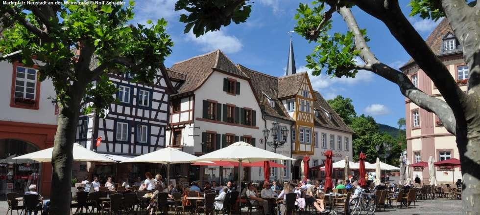 in Neustadt